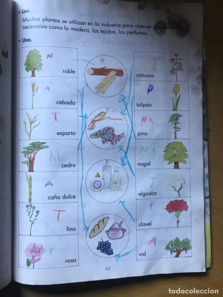 Libros: LOBATO - Tercer trimestre - 2º Primaria - Ed. SM - Foto 2 - 203197737