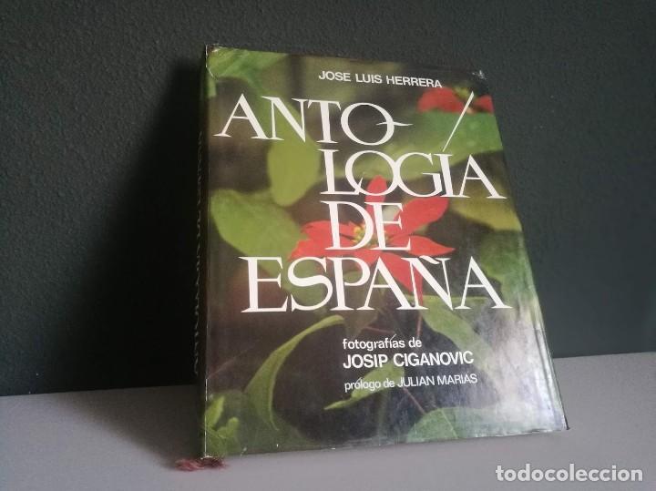 ANTOLOGÍA DE ESPAÑA (Libros Nuevos - Educación - Aprendizaje)