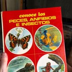 Livres: CONOCE LOS PECES, ANFIBIOS E INSECTOS 1981 FHER HERMANN FAY OTTO VON FRISH. Lote 219710302