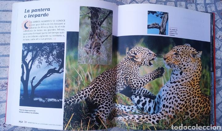 Libros: Libro, 250 curiosidades sobre los animales - Foto 2 - 222595533