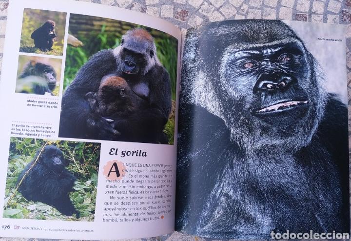 Libros: Libro, 250 curiosidades sobre los animales - Foto 4 - 222595533