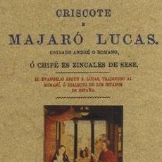 Libros: CRISCOTE E MAJARO LUCAS CHIBADO ANDRE O ROMANO O CHIPE ES ZINCALES DE SESE. Lote 258833260
