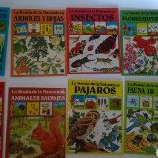 Livros: LOTE DE 8 LIBROS SENDA DE LA NATURALEZA EDICIONES PLESA SM COSTAS Y PLAYAS SALVAJES PÁJAROS FAUNA ... Lote 293206138