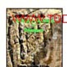 Libros: GRABADOS RUPESTRES DE MENORCA (ARQUEOLOGÍA ARTE HISTORIA) (LAGARDA). Lote 191909547