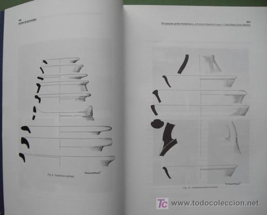 Libros: ACTAS DO CONGRESSO DE PROTO-HISTÓRIA EUROPEIA. DOS TOMOS. OBRA COMPLETA. ARQUEOLOGÍA - Foto 5 - 13249102