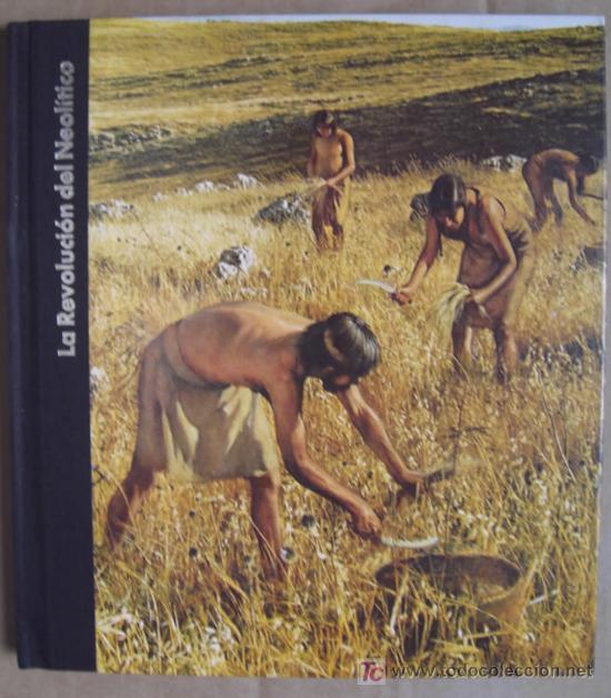 ORÍGENES DEL HOMBRE: LA REVOLUCIÓN DEL NEOLÍTICO (Libros Nuevos - Historia - Arqueología)