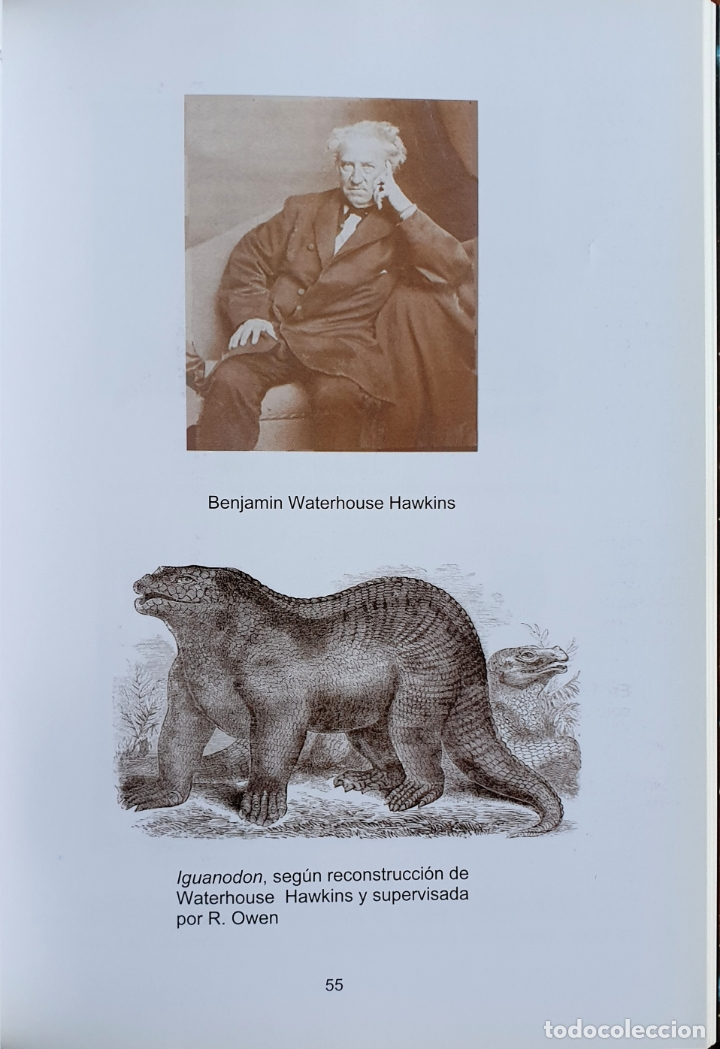 Libros: FENÓMENOS ASTROFISICOS Y LA EXTINCIÓN DE LOS DINOSAURIOS - Foto 4 - 169046684