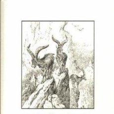 Libros de Aventuras: LA ESPAÑA AGRESTE O INEXPLORADA. Lote 128644507