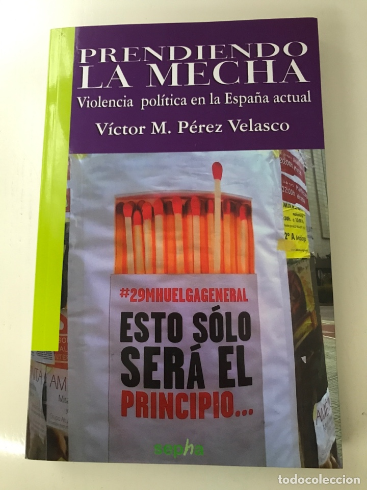PRENDIENDO LA MECHA. VIOLENCIA POLÍTICA EN LA ESPAÑA ACTUAL (Libros bajo demanda)