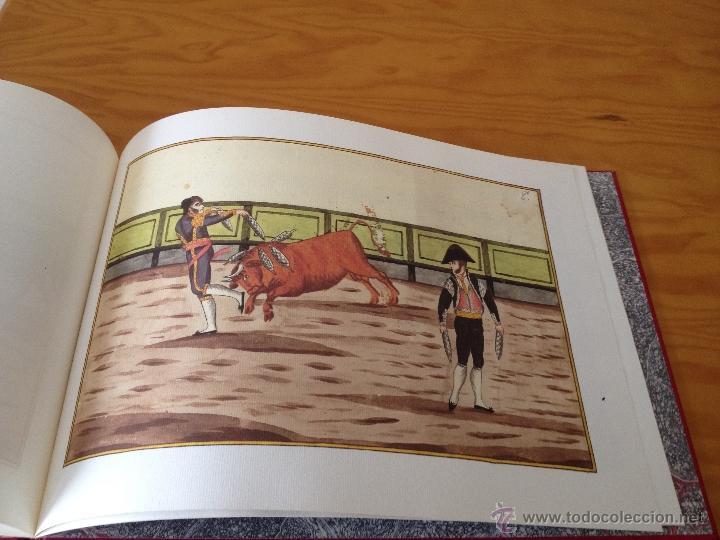 Libros: XIMENEZ. TAUROMAQUIA. 1796. E.D. COM. DE MADRID. MUY ILUSTRADO CON ESTUDIO DE NOTAS ADJUNTO. - Foto 8 - 47964199