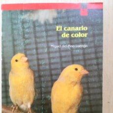 Libros: EL CANARIO DE COLOR. NUEVO. Lote 122006407