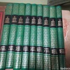 Libros: EL MUNDO DE LOS ANIMALES. Lote 131095411