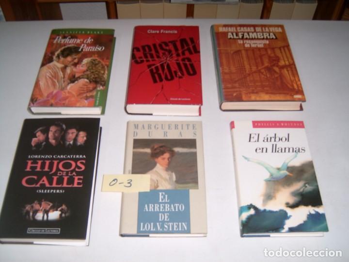 LOTE DE 6 LIBROS (Libros Nuevos - Bellas Artes, ocio y coleccionismo - Otros)