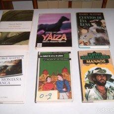 Libros: LOTE DE 6 LIBROS. Lote 146245830