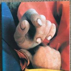 Livros: OS HOMES DO BONITO. Lote 203795972