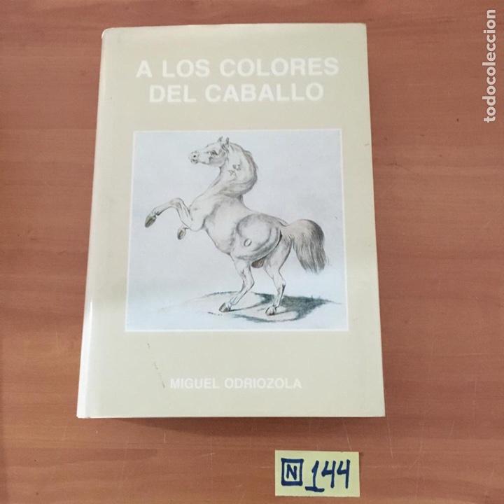 A LOS COLORES DEL CABALLO (Libros Nuevos - Bellas Artes, ocio y coleccionismo - Otros)