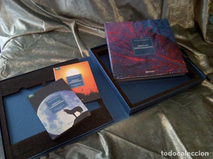 Libros: LIBRO CULTURAS FASCINANTES, ED. PLANETA - Foto 6 - 218302037