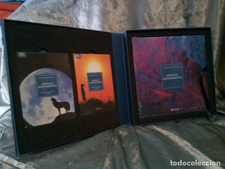 Libros: LIBRO CULTURAS FASCINANTES, ED. PLANETA - Foto 7 - 218302037