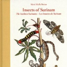 Libros: INSECTS OF SURINAM LIBRO TASCHEN NUEVO. Lote 233619500