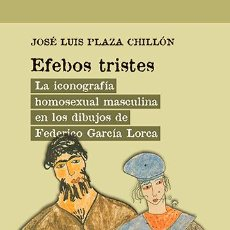 Libros: LA ICONOGRAFÍA HOMOSEXUAL MASCULINA EN LOS DIBUJOS DE FEDERICO GARCÍA LORCA.JOSÉ LUIS PLAZA CHILLÓN. Lote 244615495