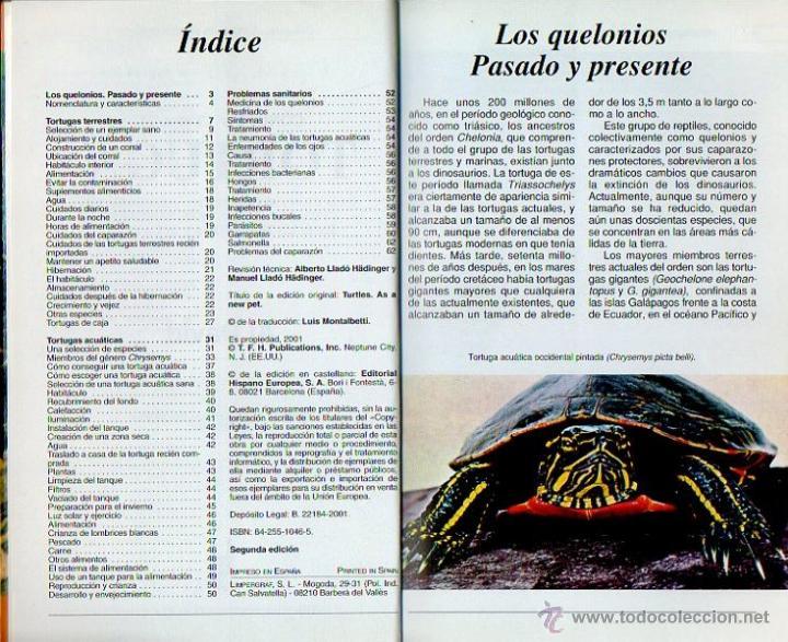 Libros: Conoce y cuida tu tortuga. Al David. Hispano Europea, 1ª edición, 2001 - Foto 3 - 262128640