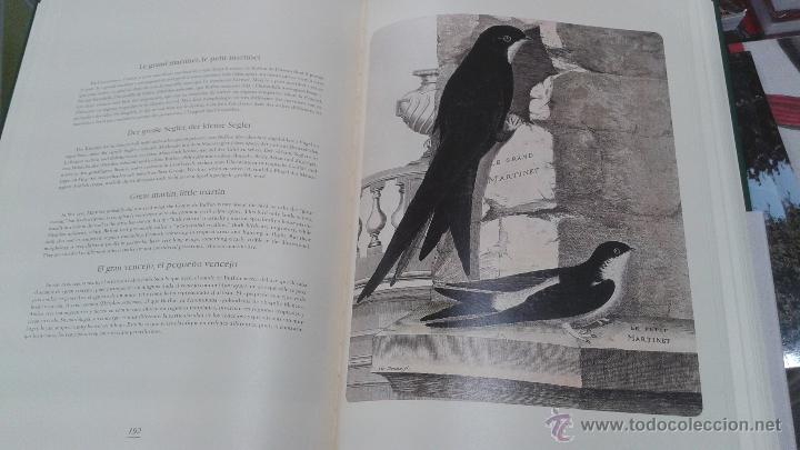 Libros: PRECIOSO VOLUMEN HISTORIA DE LAS AVES. PROFUSAMENTE ILUSTRADO CON LAMINAS. PRECINTADO. ED. ULLMANN. - Foto 4 - 48913844