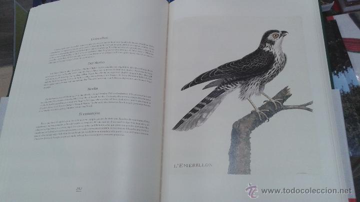 Libros: PRECIOSO VOLUMEN HISTORIA DE LAS AVES. PROFUSAMENTE ILUSTRADO CON LAMINAS. PRECINTADO. ED. ULLMANN. - Foto 5 - 48913844