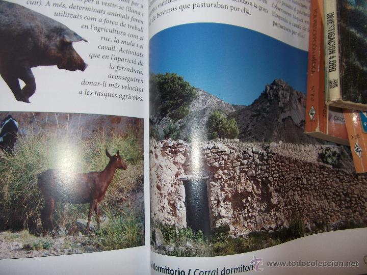 Libros: LA SERRA DE CREVILLENT , LA PRESERVACIÓN DEL MEDIO AMBIENTE , CREVILLENTE - ALICANTE. - Foto 7 - 52530431