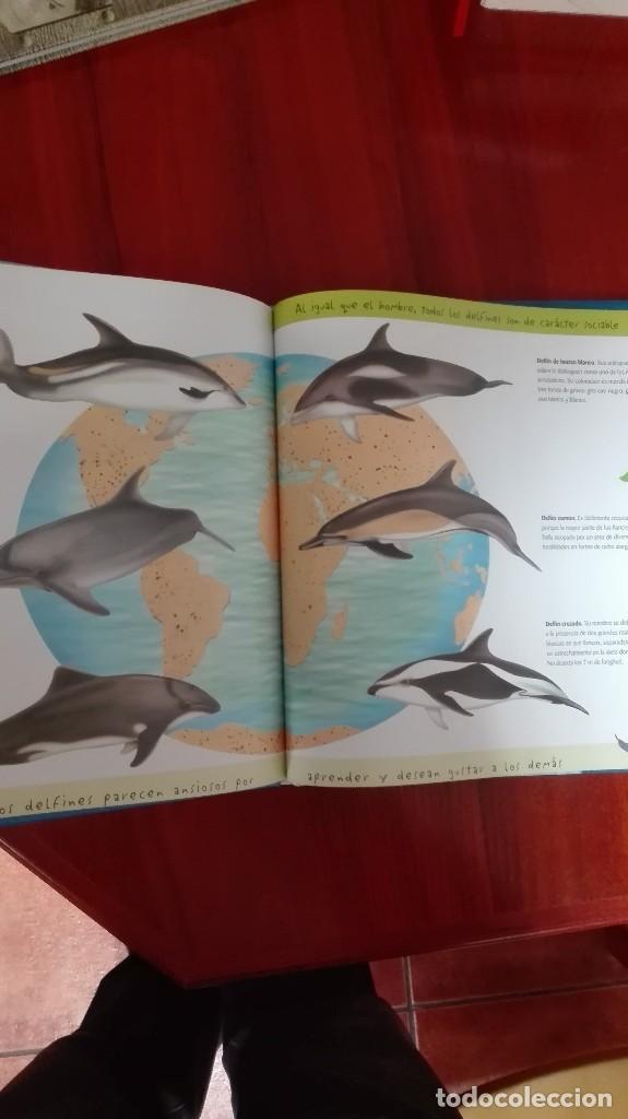 Libros: Delfines - Foto 3 - 86104008