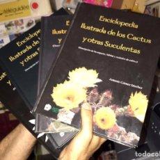 Libros: 3 TOMOS COLECCIÓN COMPLETA CACTUS Y OTRAS SUCULENTAS. Lote 96264967