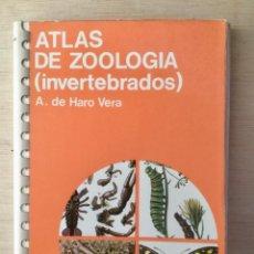 Libros: ATLAS DE ZOOLOGÍA. INVERTEBRADOS. JOVER.. Lote 121011007