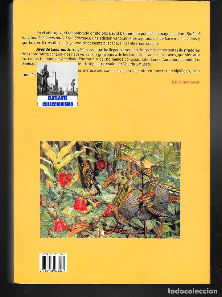 Libros: AVES NIDIFICANTES DE CANARIAS - TONY SÁNCHEZ - ORNITOLOGÍA PÁJAROS - NUEVO - MUY ILUSTRADO - Foto 5 - 136819606