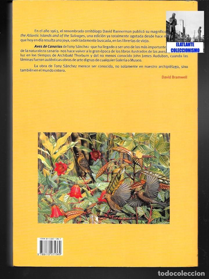Libros: AVES NIDIFICANTES DE CANARIAS - TONY SÁNCHEZ - ORNITOLOGÍA PÁJAROS - NUEVO - MUY ILUSTRADO - Foto 6 - 136819606