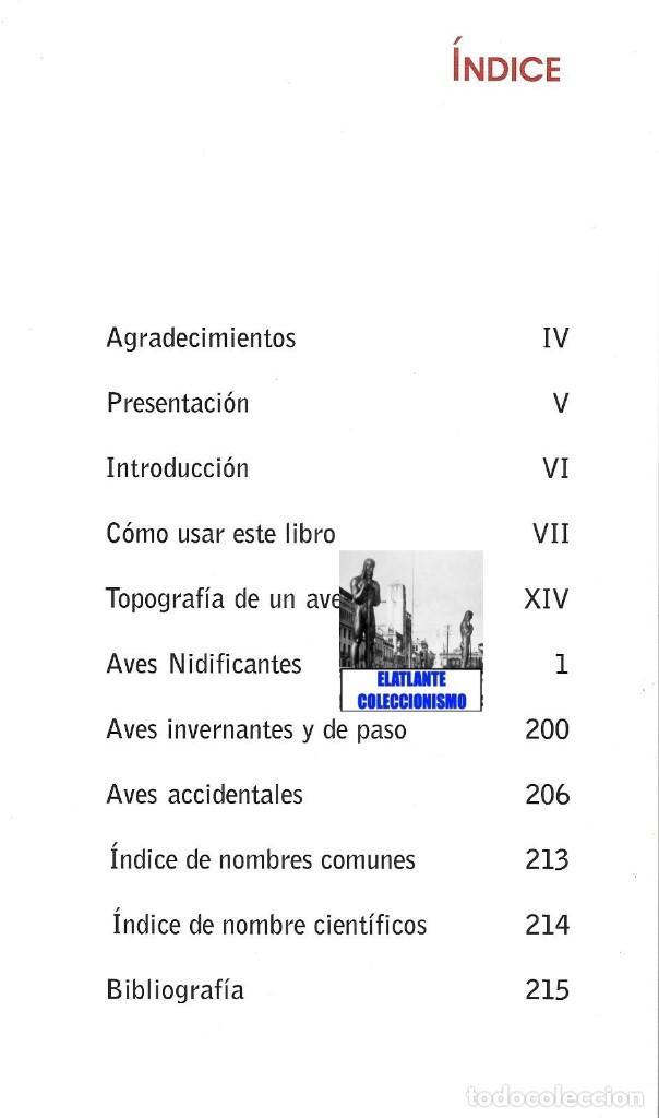 Libros: AVES NIDIFICANTES DE CANARIAS - TONY SÁNCHEZ - ORNITOLOGÍA PÁJAROS - NUEVO - MUY ILUSTRADO - Foto 7 - 136819606