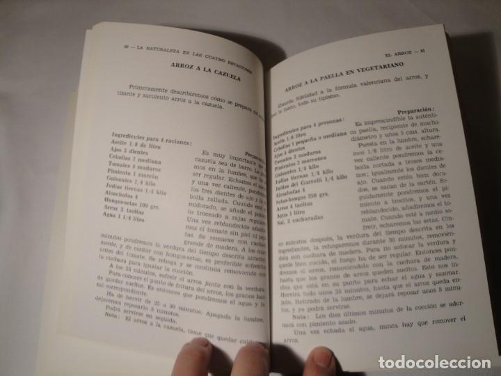 Libros: La Naturaleza en las Cuatro Estaciones. Autora: Montserrat Ortuño Gomar. Año 1976. Nuevo - Foto 3 - 139860906
