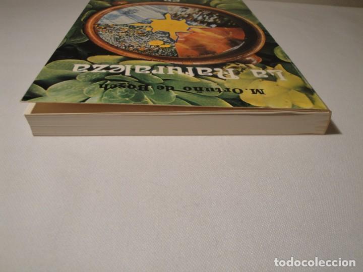 Libros: La Naturaleza en las Cuatro Estaciones. Autora: Montserrat Ortuño Gomar. Año 1976. Nuevo - Foto 8 - 139860906