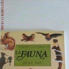 Libros: GUIA PRACTICA ILUSTRADA DE LA FAUNA - ED.BLUME. Lote 139928078