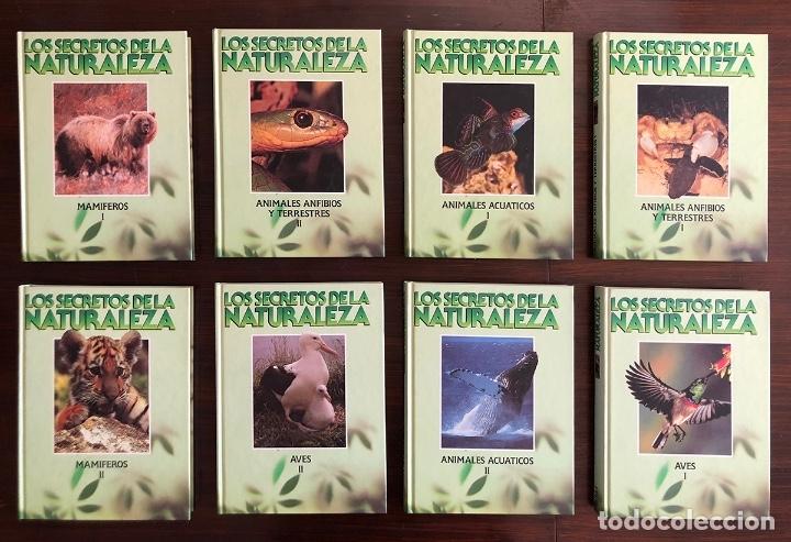 ENCICLOPEDIA COMPLETA 8 TOMOS. SECRETOS DE LA NATURALEZA. EN BUEN ESTADO. 27X20 CM. (Libros Nuevos - Ciencias, Manuales y Oficios - Biología)