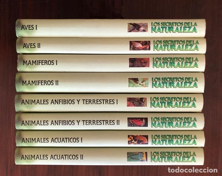 Libros: ENCICLOPEDIA COMPLETA 8 TOMOS. SECRETOS DE LA NATURALEZA. EN BUEN ESTADO. 27x20 CM. - Foto 3 - 145333070