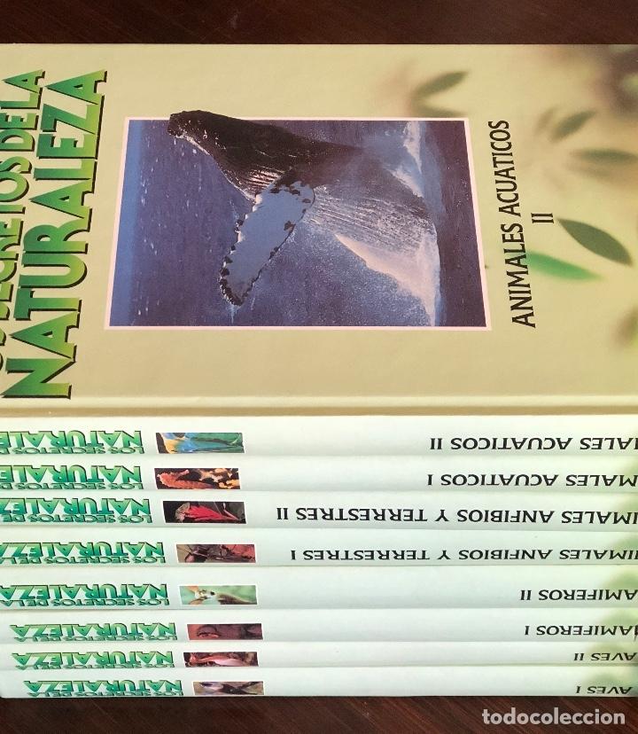 Libros: ENCICLOPEDIA COMPLETA 8 TOMOS. SECRETOS DE LA NATURALEZA. EN BUEN ESTADO. 27x20 CM. - Foto 4 - 145333070