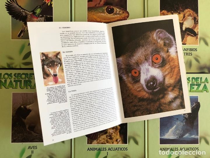 Libros: ENCICLOPEDIA COMPLETA 8 TOMOS. SECRETOS DE LA NATURALEZA. EN BUEN ESTADO. 27x20 CM. - Foto 2 - 145333070