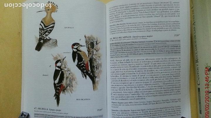 Libros: CANTOS Y RECLAMOS DE LAS AVES DE CANARIAS - Foto 3 - 139491386