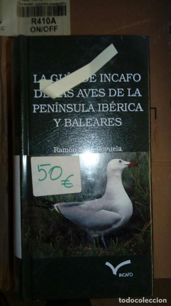 INCAFO AVES (Libros Nuevos - Ciencias, Manuales y Oficios - Biología)