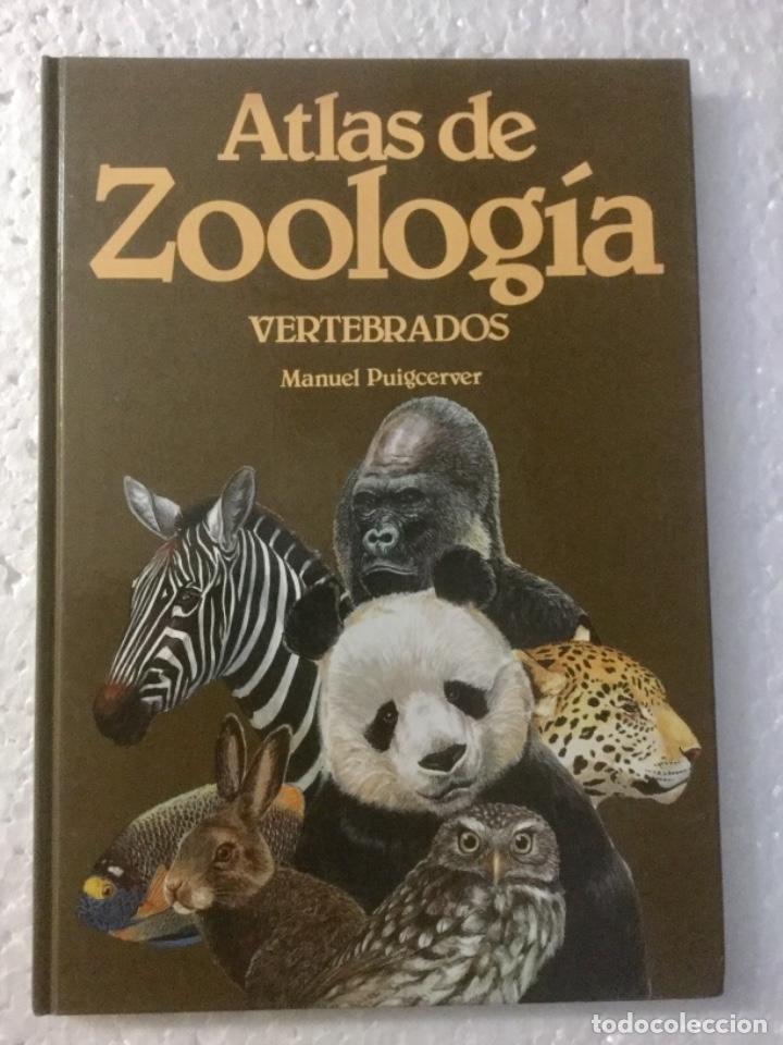 ATLAS DE ZOOLOGÍA. VERTEBRADOS. M. PUIGCERVER. NUEVO (Libros Nuevos - Ciencias, Manuales y Oficios - Biología)