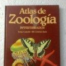 Libros: ATLAS DE ZOOLOGÍA (INVERTEBRADOS). J. CASTELLÓ. NUEVO. Lote 153698094