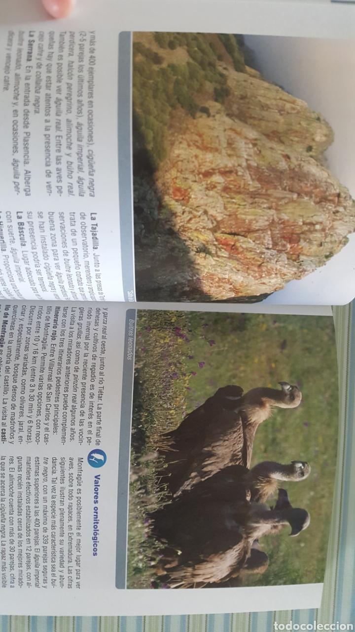 Libros: Rutas Ornitológicas por Extremadura. Fauna. Ornitología. Aves - Foto 2 - 156701256
