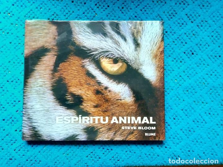 Libros: ESPIRIRU ANIMAL STEVE BLOOM BLUME 2006 IMPECABLE. - Foto 1 - 159203182