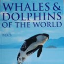 Libros: MARK SIMMONDS: WHALES & DOLPHINS OF THE WORLD. Lote 160667892