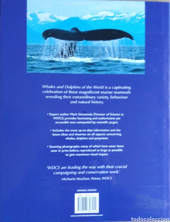 Libros: Mark Simmonds: Whales & Dolphins of the world - Foto 2 - 160667892