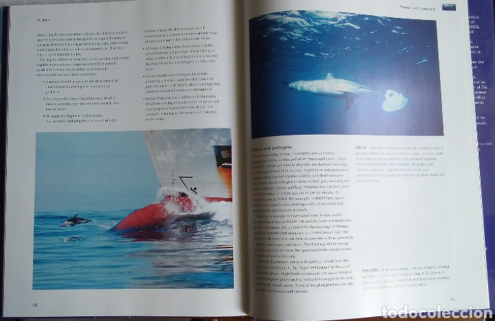 Libros: Mark Simmonds: Whales & Dolphins of the world - Foto 3 - 160667892